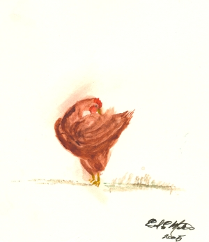 Young Chicken Geclee Print